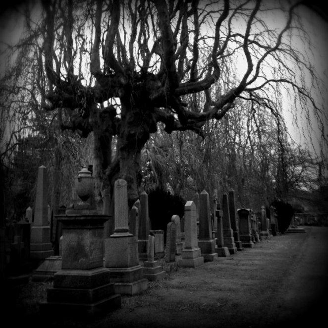 2014-01-graves