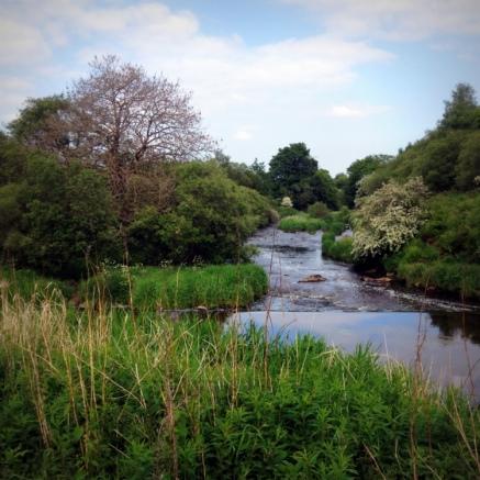 2014-05-river