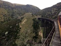 taieri gorge train